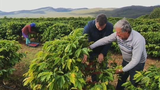 Conheça a produção de café de Piatã, na Chapada Diamantina na Bahia