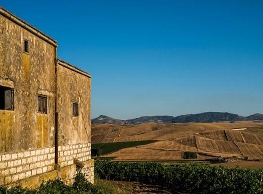 Vinícola Cusumano: vinhos do calor da Sicília