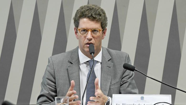 ministro meio ambiente ricardo salles (Foto: Ministério do Meio Ambiente/ Divulgação)