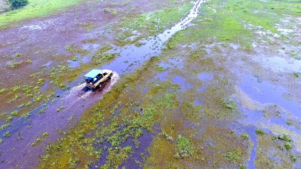 Pantanal  (Foto: Alexandre Sá/TG)