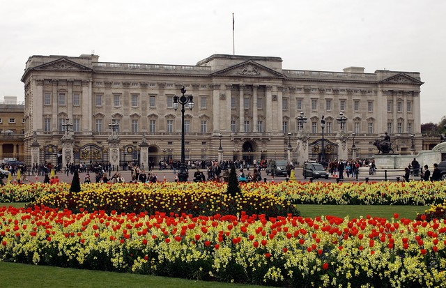 LONDON, ENGLAND - APRIL 15:  Blossom and spring flowers bloom in front of Buckingham Palace before the Royal Wedding on April 15, 2011 in London, England. Stands, media facilities and temporary fencing are being erected along the route the couple will tra (Foto: Getty Images)