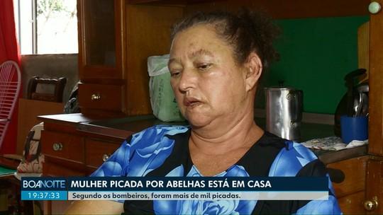 Mulher que levou mais de mil picadas de abelhas em Cascavel deixa o hospital