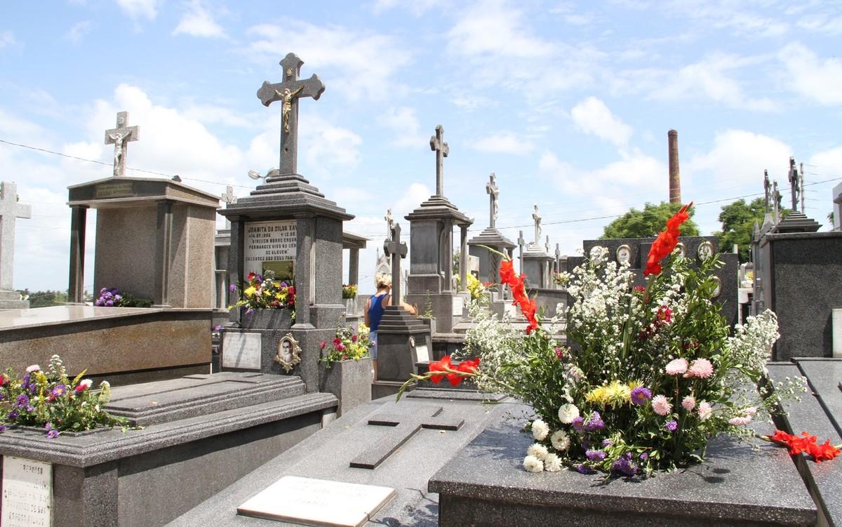 Preço de grinalda de rosas varia de R$ 180 a R$ 450 em João Pessoa, diz Procon