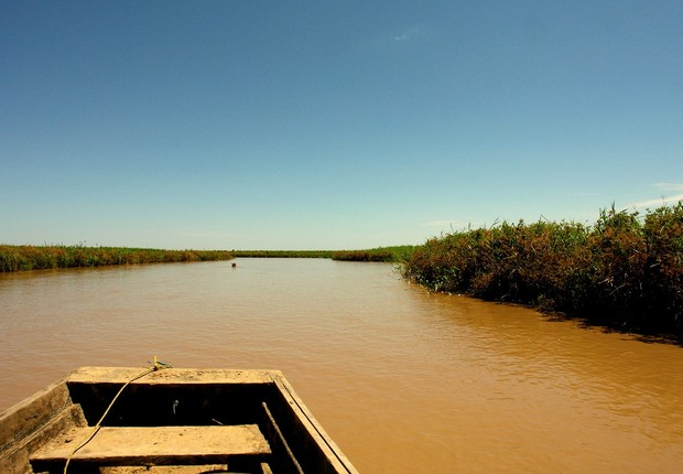 Rio Amazonas (Foto: Pixabay)