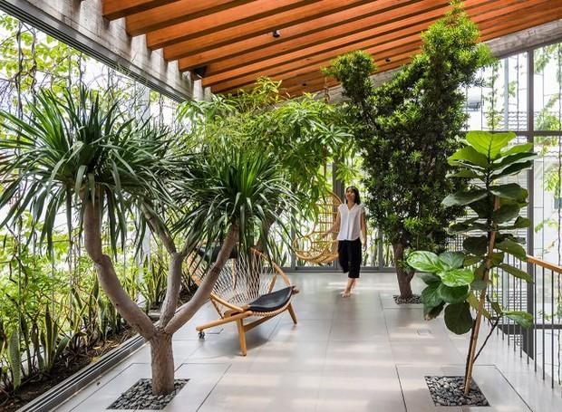 A abundancia de plantas foi o foco do proejeto (Foto: Hiroyuki Oki/ Dezeen/ Reprodução)