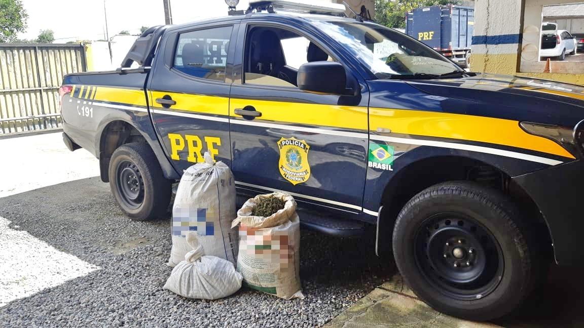 Quatro pessoas são detidas com 28 kg de maconha escondidos em porta-malas de carro, em Caruaru