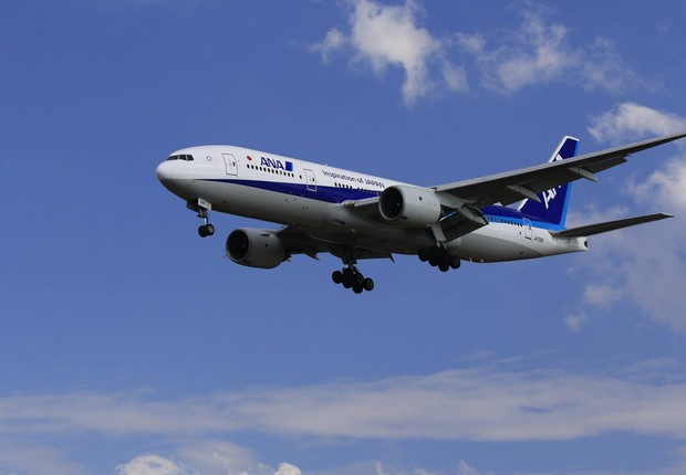 All Nippon Airways (Foto: Reprodução/Facebook/All Nippon Airways)