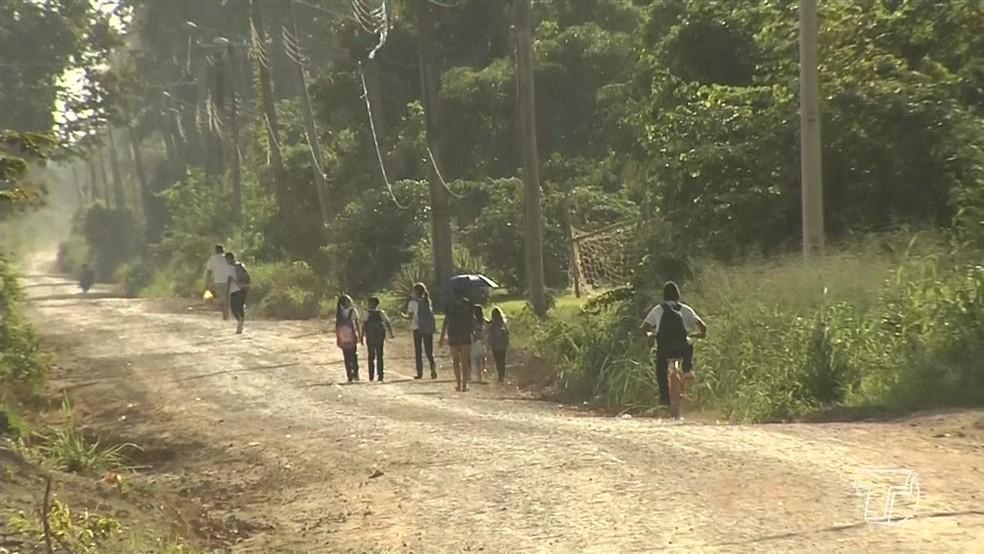 -  Alunos deixam de ir para escola por falta de transporte na zona rural de Santarém  Foto: Tv Tapajós/Reprodução