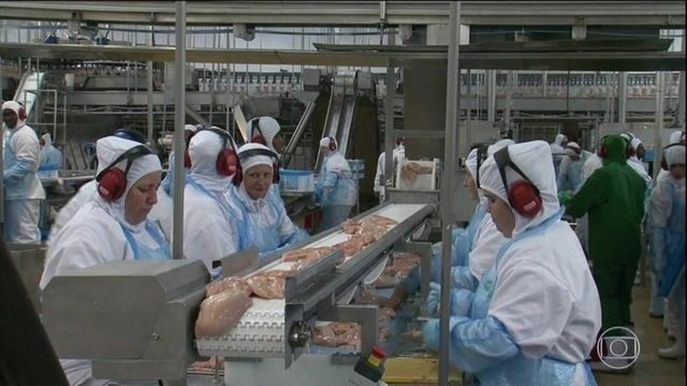 Frigorífico de carne de frango: setor espera gerar mais empregos com o prolongamento da desoneração da folha — Foto: Reprodução/JN