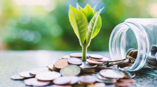 Sustentabilidade (Foto: Thinkstock)