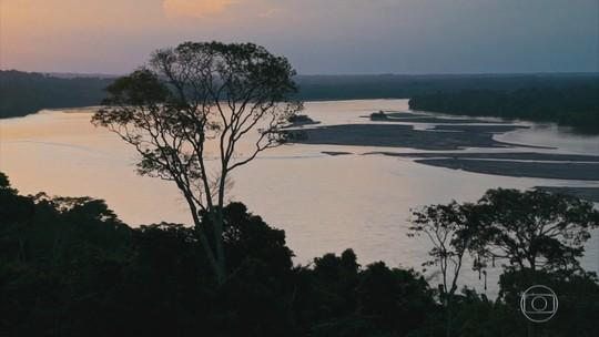 Conheça o coração da floresta amazônica do Equador