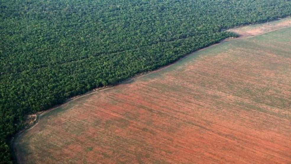 Desmatamento na Amazônia — Foto: Paulo Whitaker/Reuters