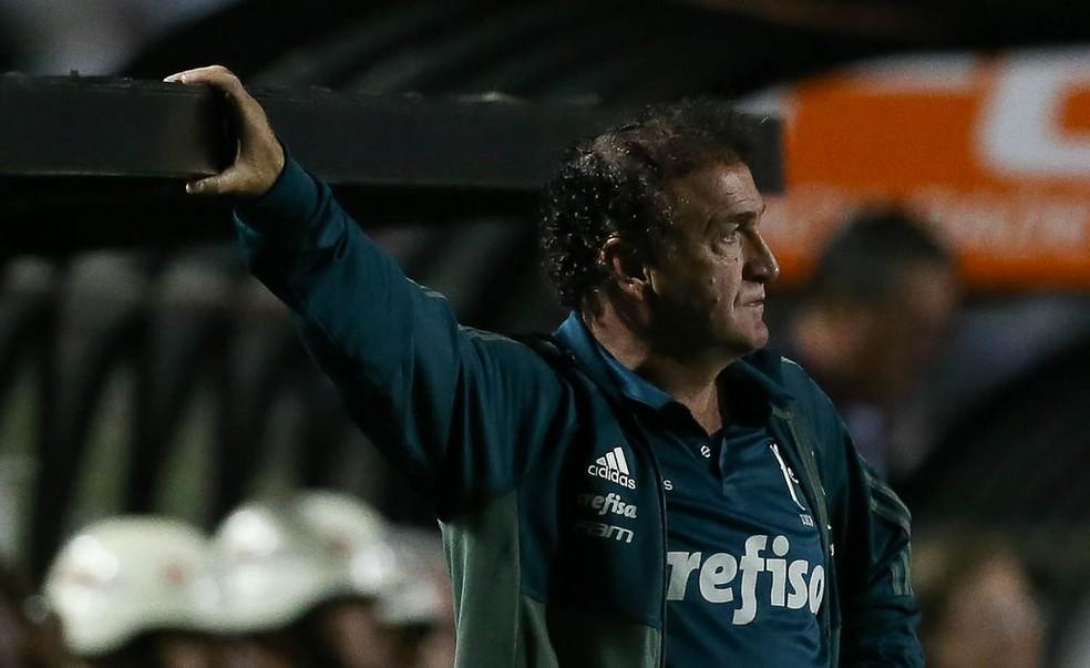 Cuca deixou o Palmeiras em 2017 (Foto: Cesar Greco/Ag Palmeiras/Divulgação)