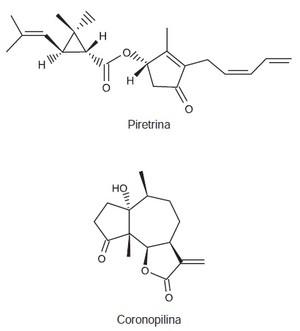 Questão de química do Enem (Foto: Enem)