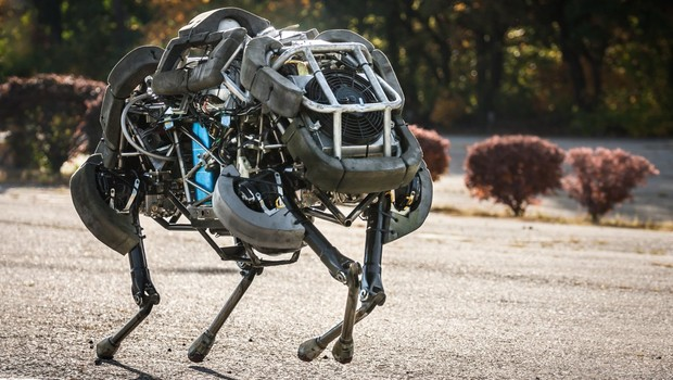 WildCat, da Boston Dynamics (Foto: Divulgação/Boston Dynamics)
