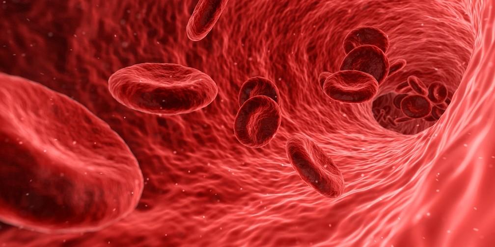 Terapia tem o objetivo de imobilizar a célula para que ela seja incapaz de atingir outros órgãos no organismo (Foto: Pixabay/Creative Commons/Qimono)