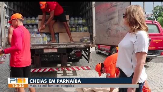 Parede de casa desaba e filhote de cachorro é resgatado após ficar preso sob escombros no Piauí