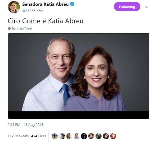 Foto publicada por Kátia Abreu no Twitter (Foto: reprodução)