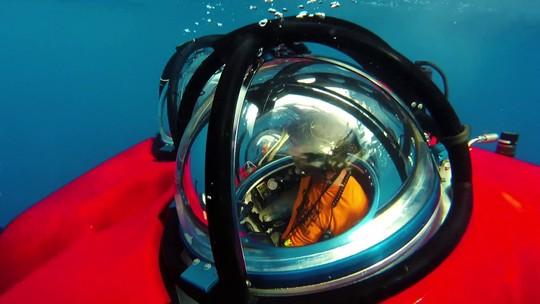 Expedição questiona exploração de petróleo em área de recifes descoberta