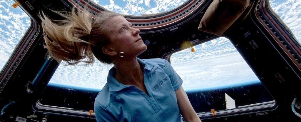 Astronauta Karen Nyberg na Estação Espacial Internacional ( ISS) (Foto: NASA)