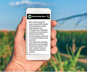 whats-app-globo-rural