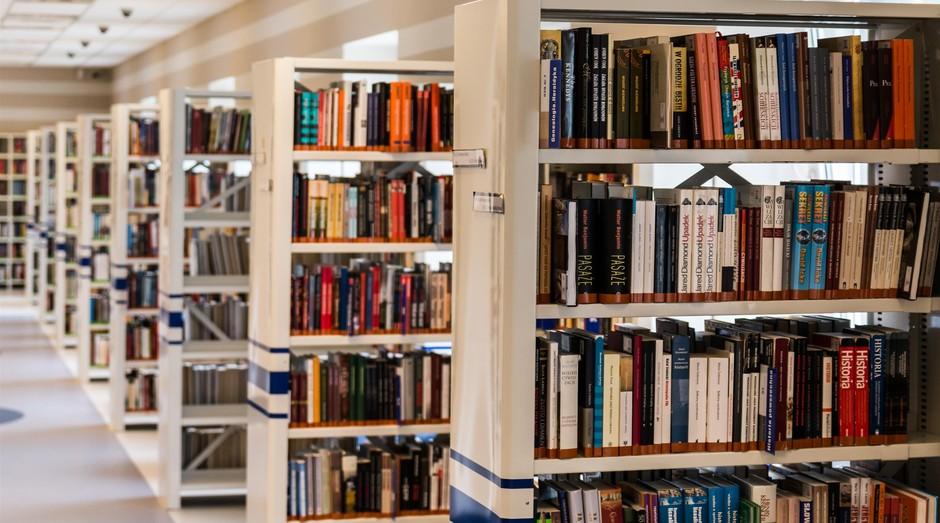 Escola, ensino, educação, biblioteca, livros, livro (Foto: Reprodução/Pexel)