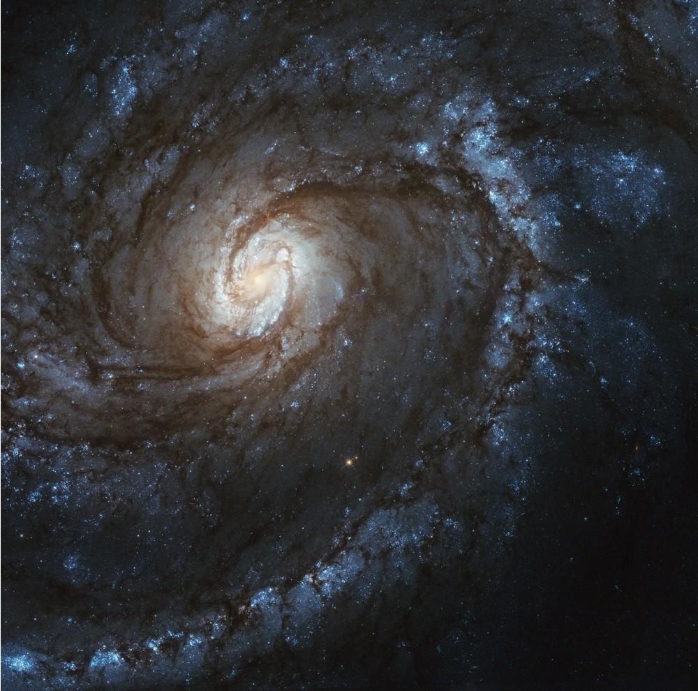 Galáxia espiral M100  (Foto: NASA)