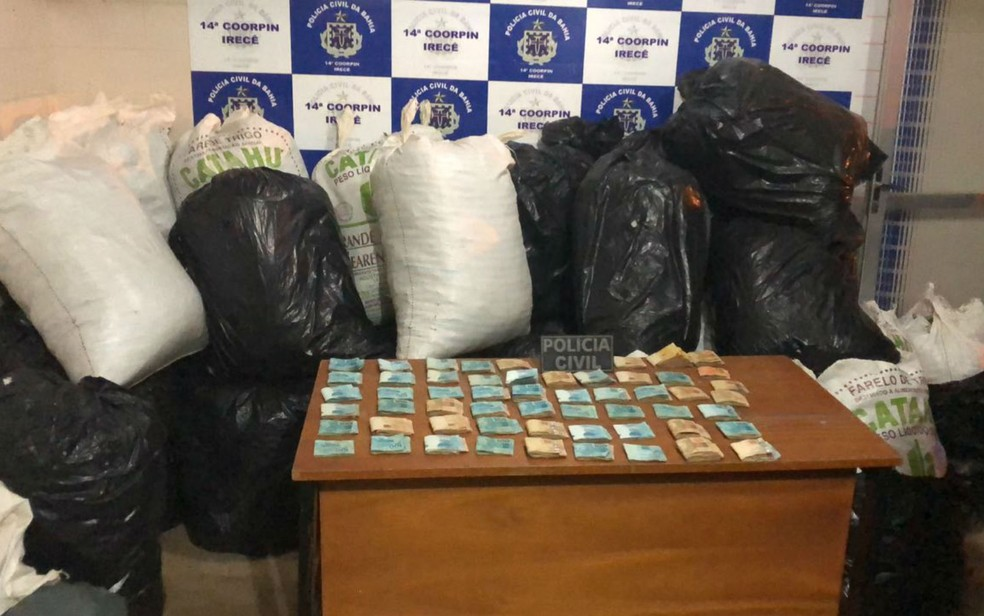 Quase meia tonelada de maconha e R$ 55 mil foram apreendidos com o suspeito (Foto: Divulgação/Polícia Civil)