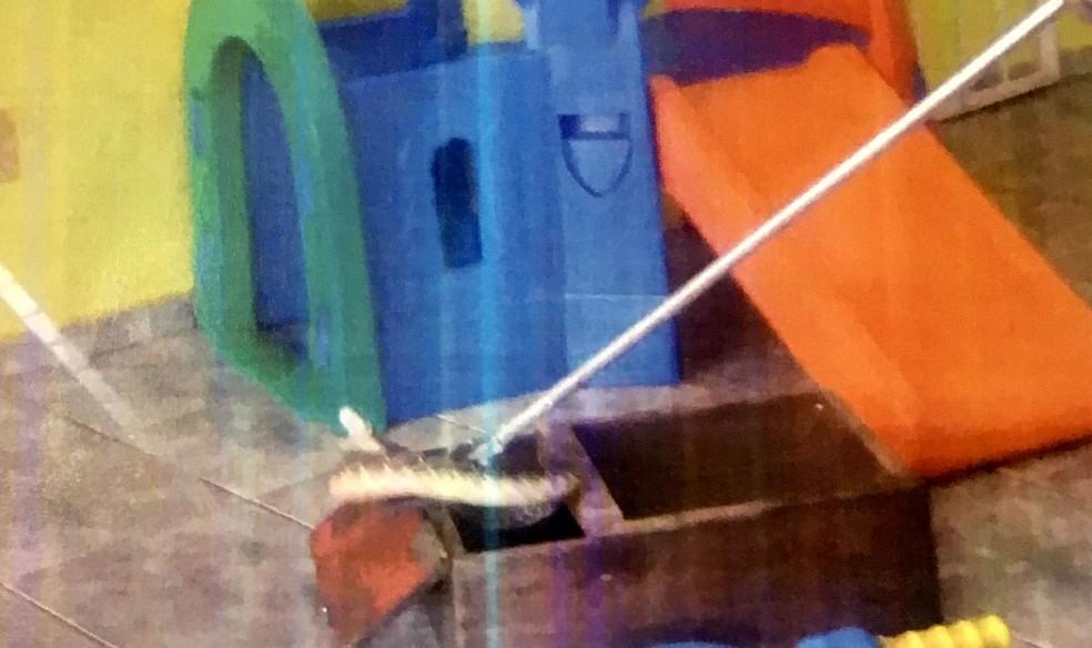 Registro presente no relatório do TCE mostra que até uma cobra foi encontrada entre os brinquedos de uma creche fiscalizada  — Foto: TCE/Divulgação