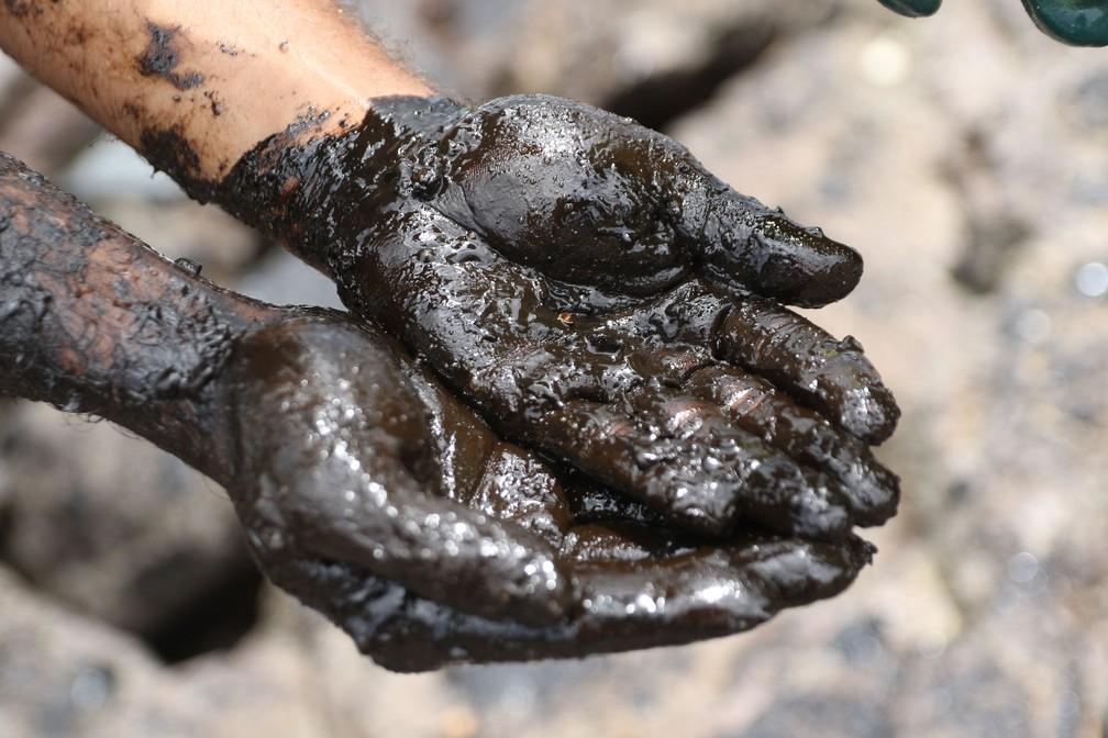 Foto de terça-feira (22) mostra voluntários retirando óleo da Pedra do Xaréu, no Litoral Sul de Pernambuco — Foto: Marlon Costa/Pernambuco Press