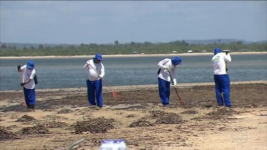 Manchas de óleo chegam à foz do Rio São Francisco