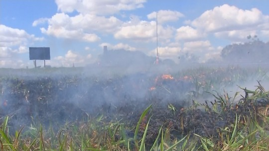 Fumaça de incêndio em mato provoca acidente entre carros e caminhão em rodovia de Pederneiras