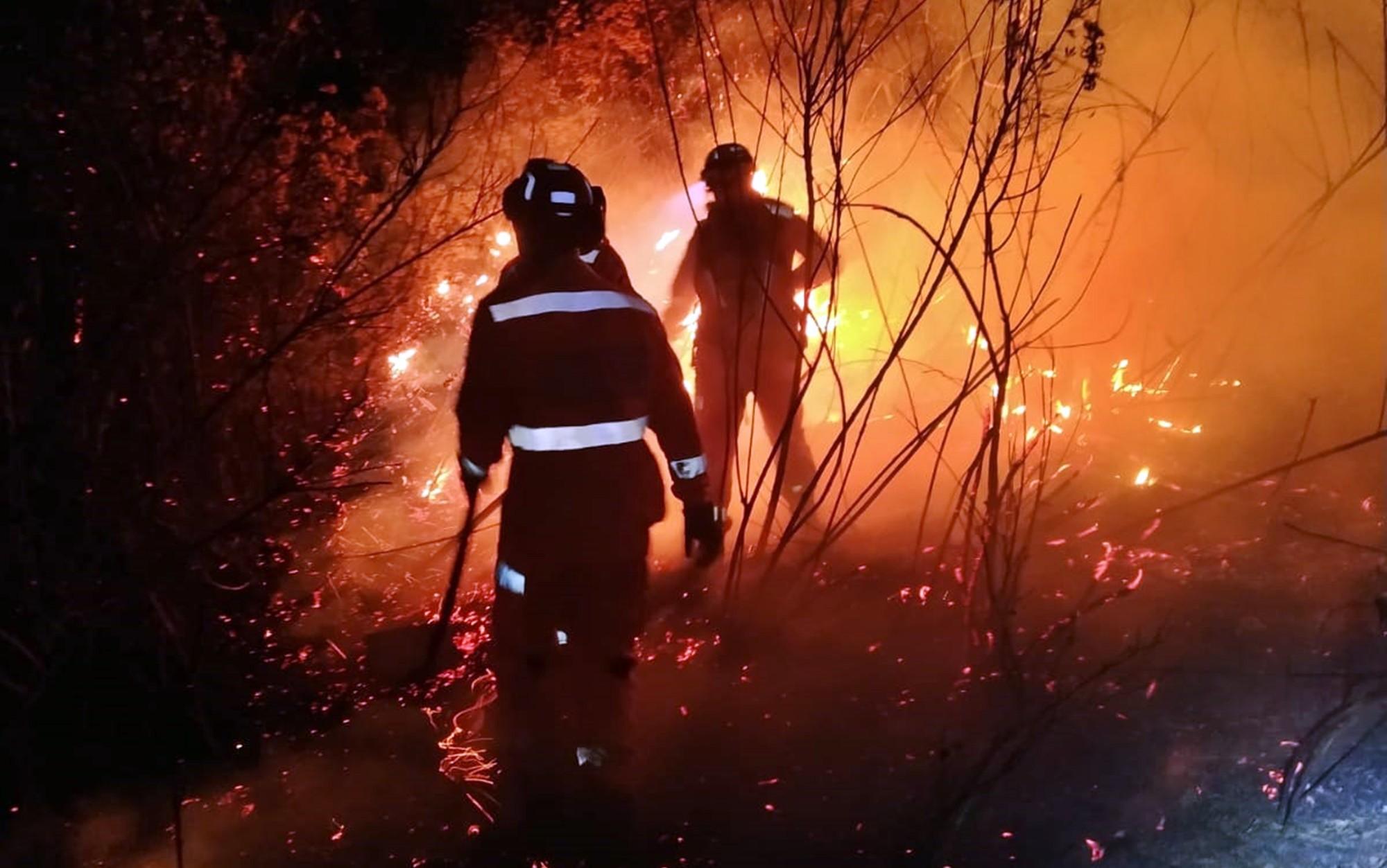 Incêndio às margens da estrada da 'Mãe Rainha' destrói vegetação em Poços de Caldas, MG