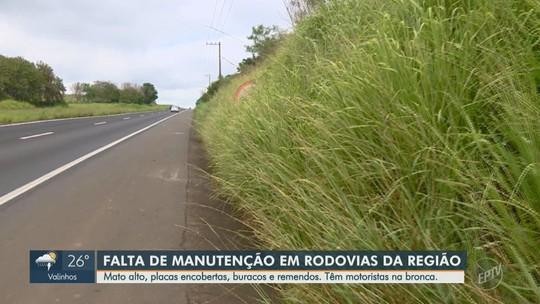 Mato alto, buracos e falta de sinalização prejudicam motoristas em rodovias da região