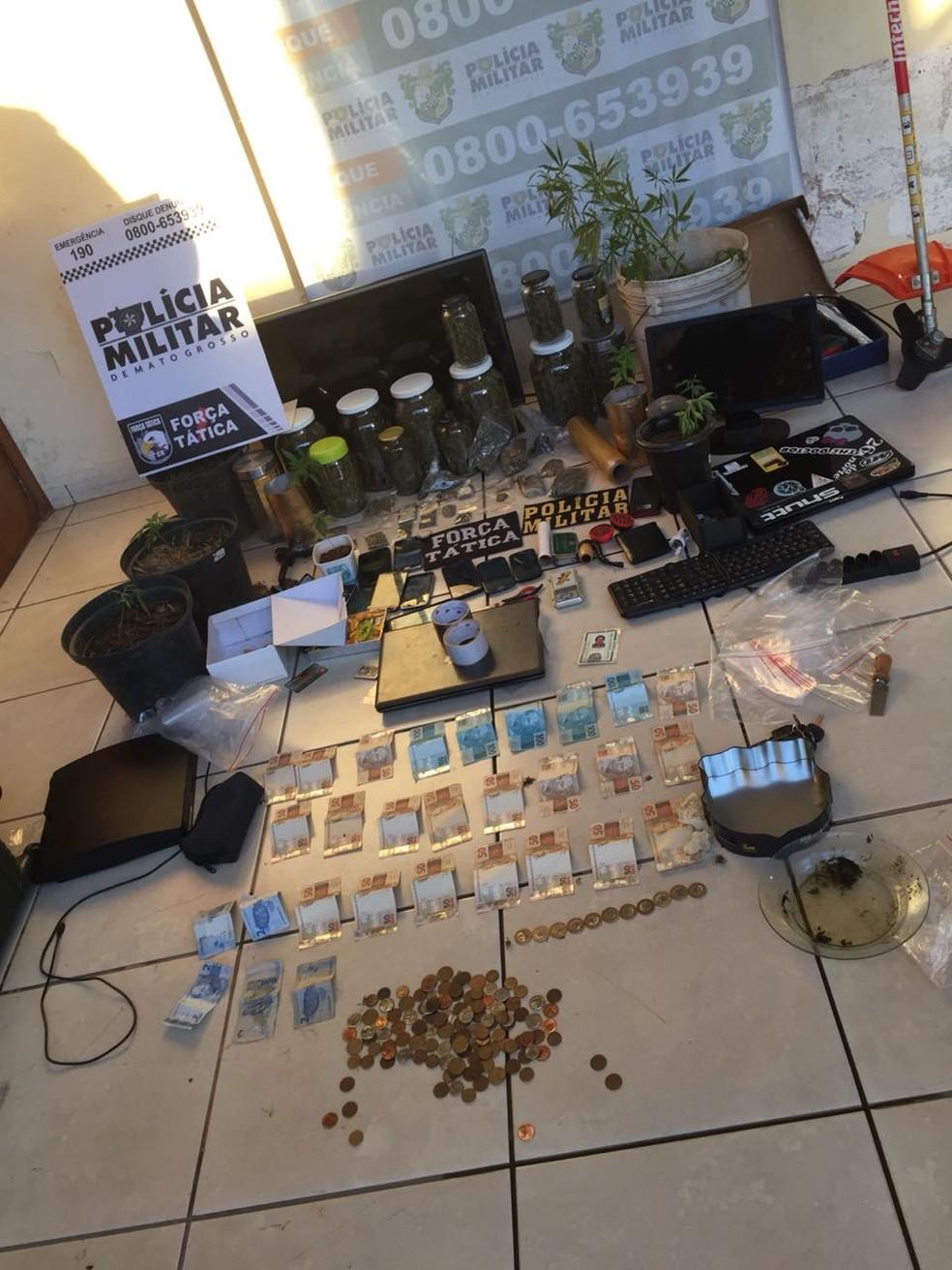 Além da plantação, a polícia apreendeu objetos usados para o comércio da droga (Foto: Polícia Militar/Divulgação)