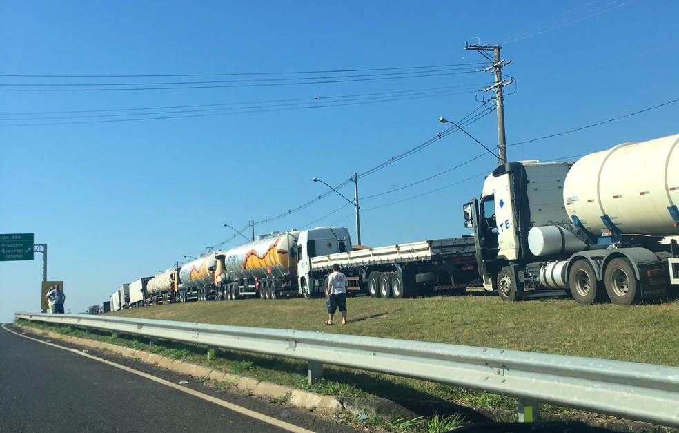 Em Presidente Prudente, caminhoneiros estão pelas proximidades da Ceagesp (Foto: Stephanie Fonseca/G1)