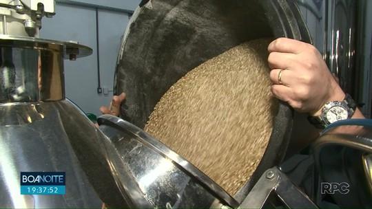 Malte produzido na região vai para crescente mercado de cervejarias artesanais