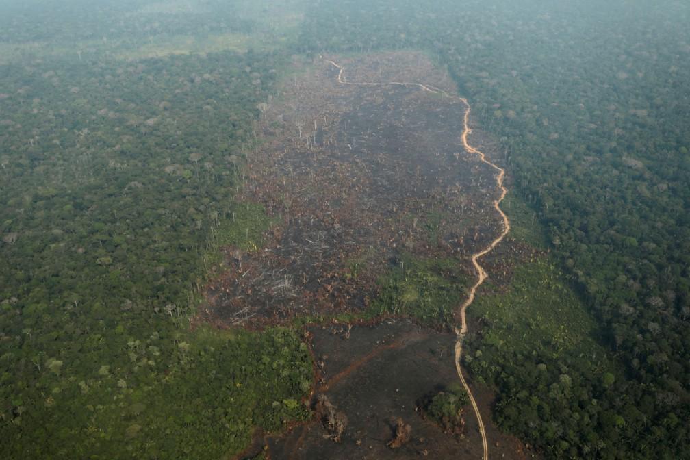 Foto aérea mostra uma parcela desmatada da Amazônia perto de Humaitá, no Amazonas, nesta quinta-feira (22) — Foto: Ueslei Marcelino/Reuters