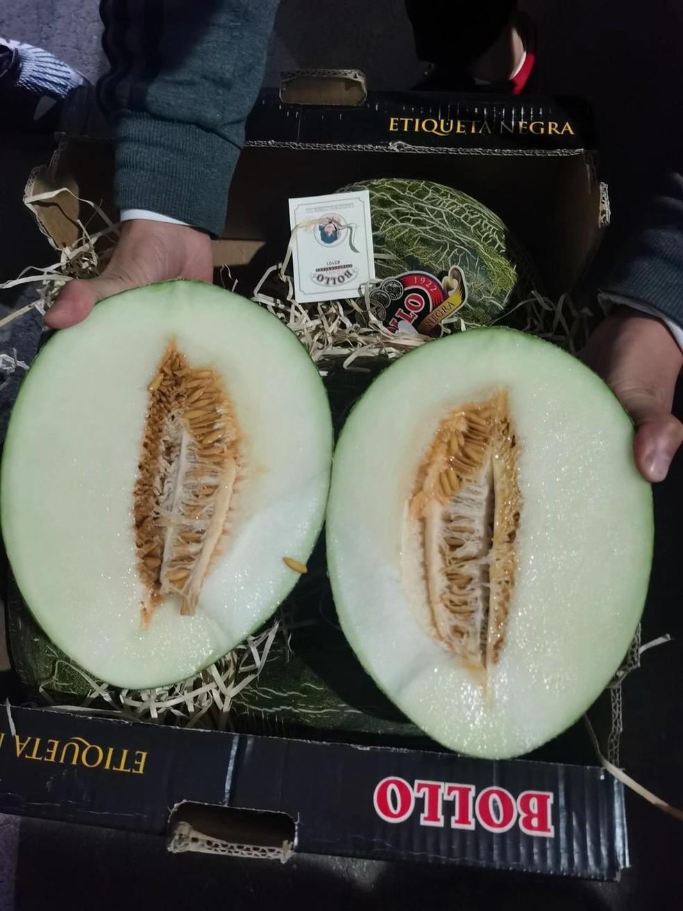 Melão potiguar foi exportado para China — Foto: Henrique Araujo / IMG DIGITAL