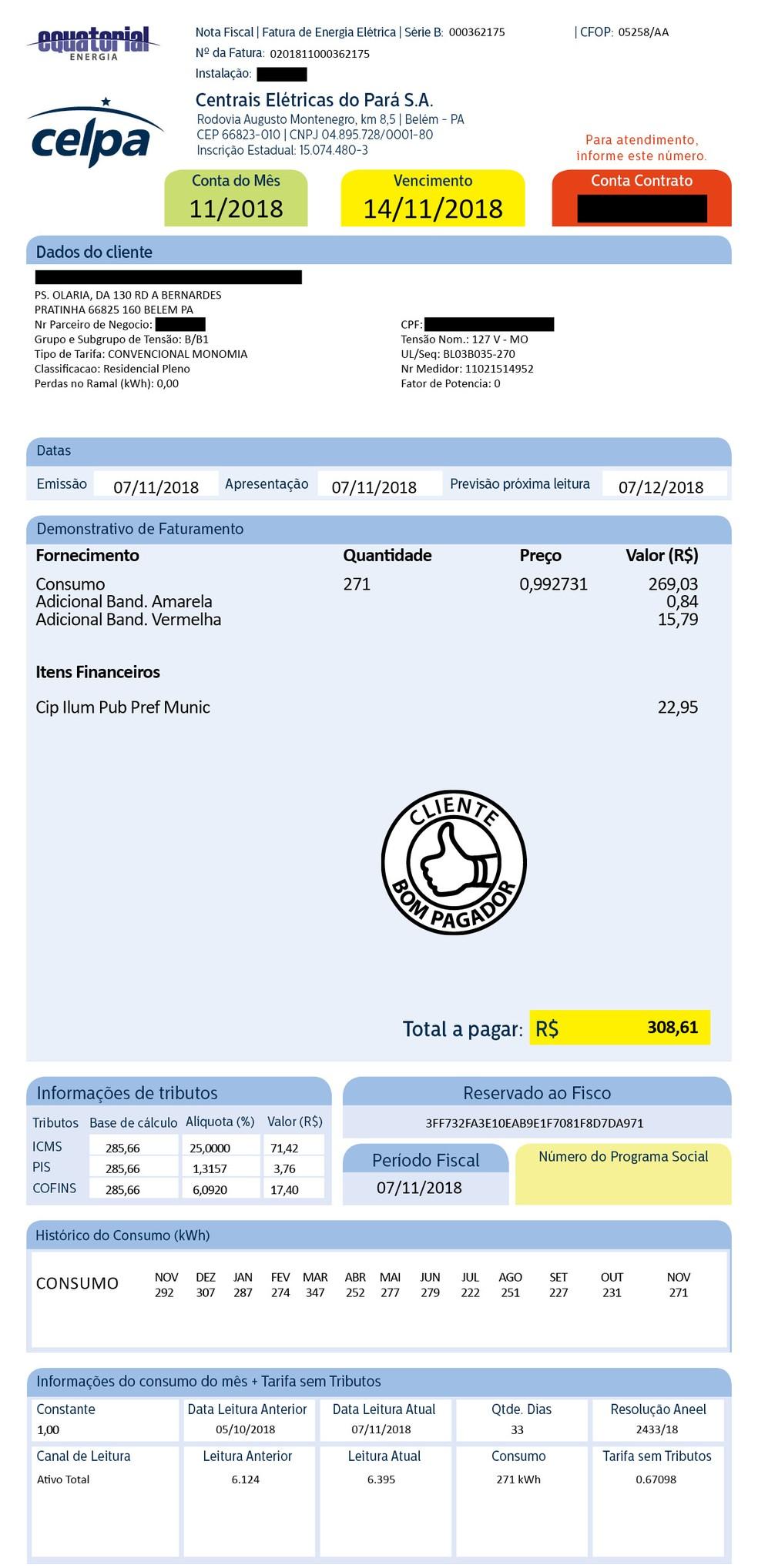 Celpa tira dúvidas de consumidores sobre as cobranças nas faturas em site. — Foto: Reprodução / Celpa