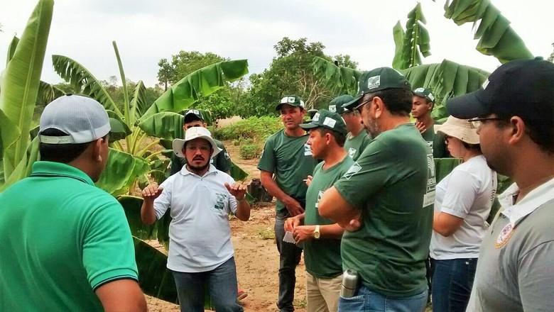 curso-tecnico-em-agronegocio-gratis-senar (Foto: Senar/Divulgação)