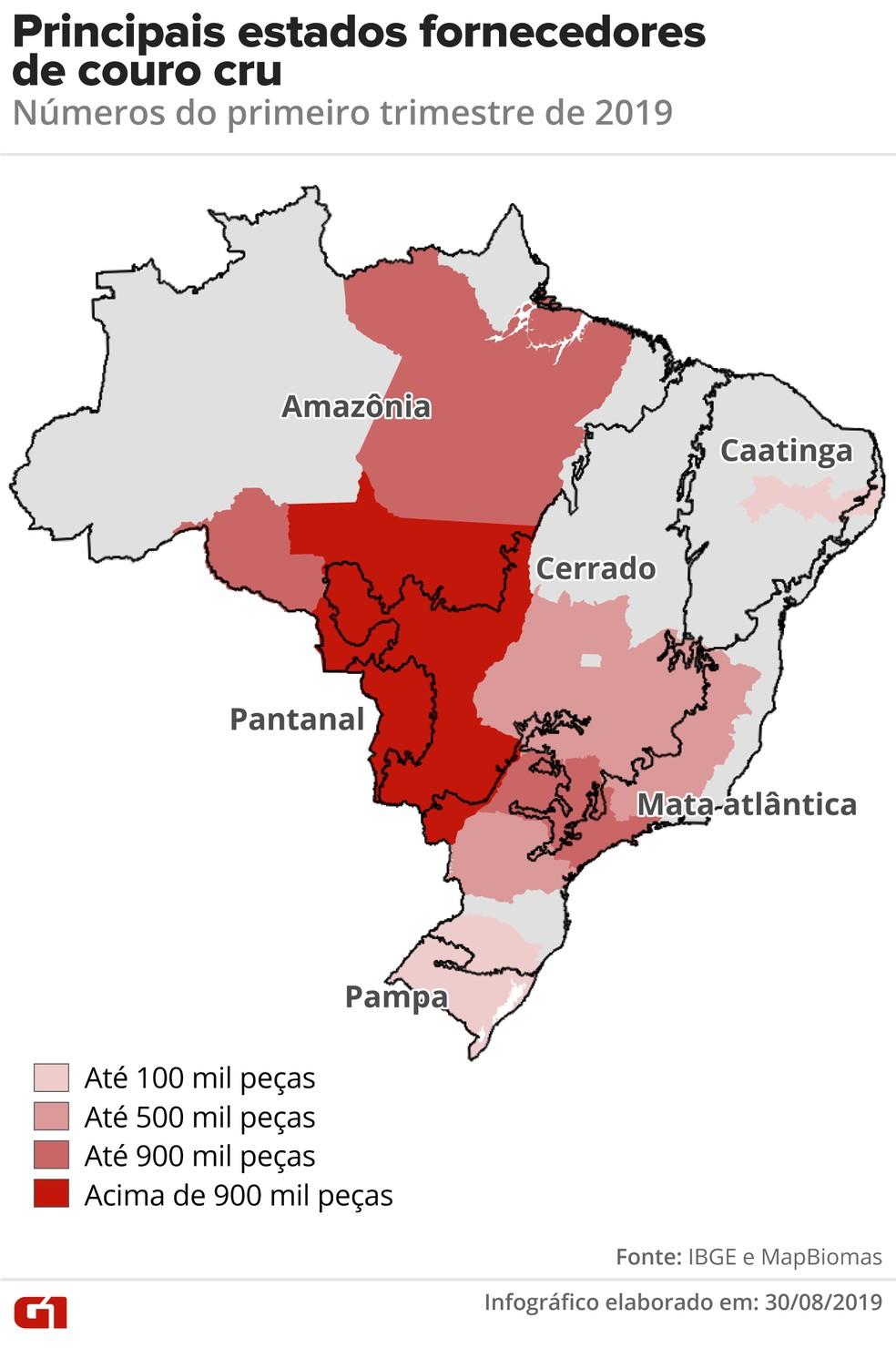Mapa mostra as principais regiões fornecedoras de couro cru do país — Foto: Rodrigo Sanches/G1