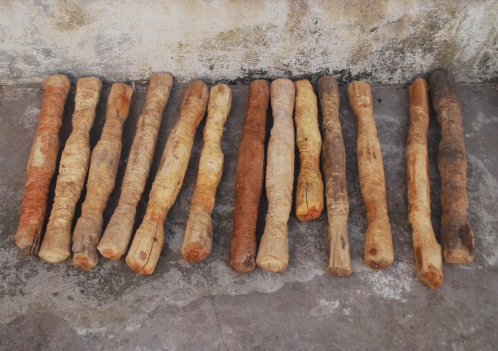 -  Mostra do Artista visual Marcone Moreira traz objetos utilizados na extração de castanha-do-Pará e de coco babuçu.  Foto: Divulgação