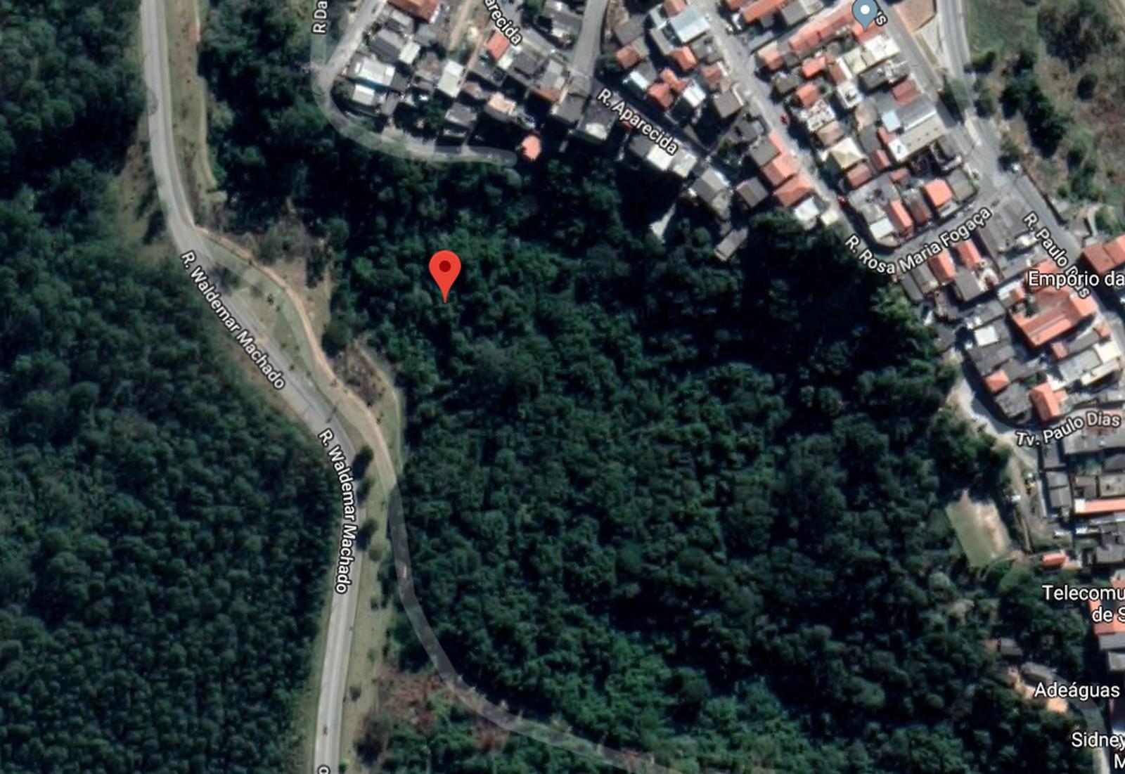 Corpo de Aline Silva Dantas foi encontrado em uma área de mata em Alumínio (SP) — Foto: Reprodução/Google Maps