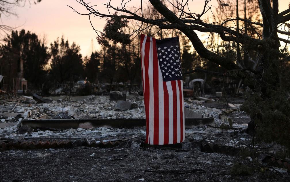6e8ed7ea6 ... 13 de outubro - Uma bandeira dos EUA é vista pendurada em uma árvore de  um