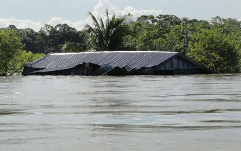 Aquecimento global e gases estufa têm efeitos diretos e indiretos sobre as chuvas amazônicas, que incluem até um 'portal entre os oceanos Atlântico e Índico' — Foto: Jochen Schongart/INPA