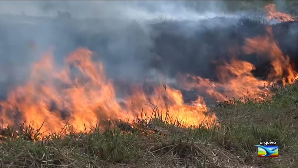 O Maranhão é 3º em ranking de queimadas irregulares do país, (Foto: Reprodução/TV Mirante)