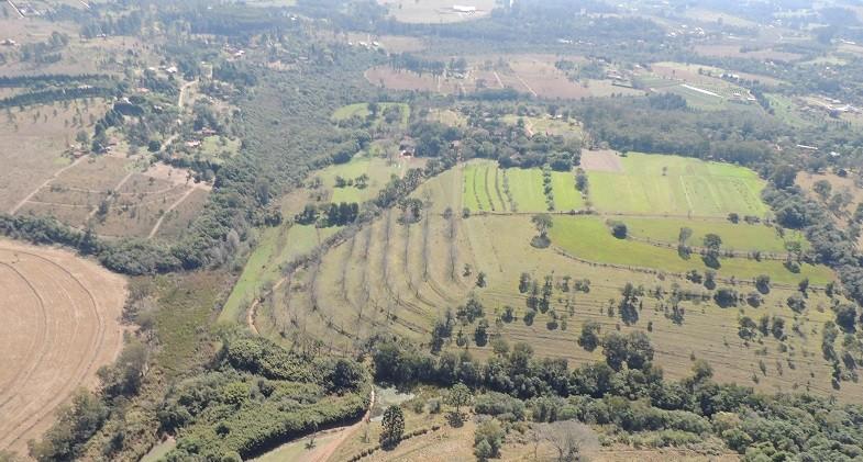 fazenda demétria (Foto: Divulgação)