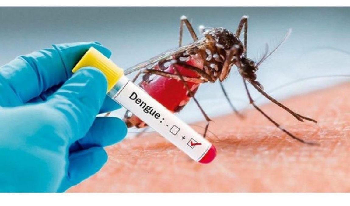 MS tem 22 mortes por dengue e notificações já ultrapassam a metade de todo o ano passado
