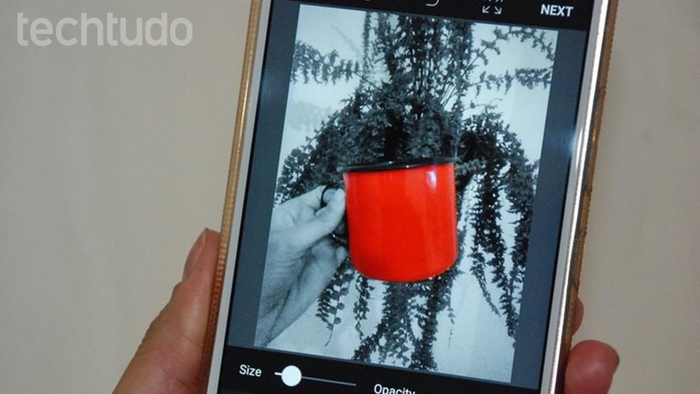 Veja como deixar um objeto colorido e o fundo da foto preto e branco pelo celular (Foto: Raquel Freire/TechTudo)